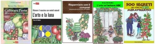 Calendario Semina E Raccolta Ortaggi.Valeriana Coltivare L Orto